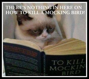 To Kill a Mockingbird Meme
